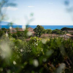 bellissima vista del mare di San Vincenzo e delle isole dell'arcipelago toscano. Vista dalla terrazza dell'appartamento A. Castiglioni, Castel del Mare